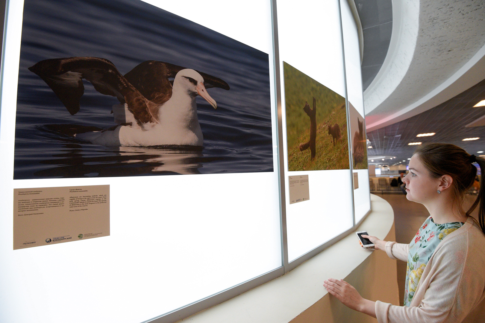 The Commander Islands Nature Reserve Photo Show in Pulkovo Extended